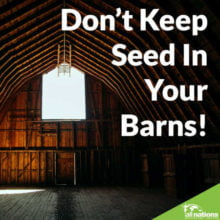 Don't Keep Seed In Your Barns